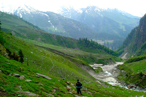 Green meadows between Dhundi and Bhakartach during the Mt Shetidhar expedition